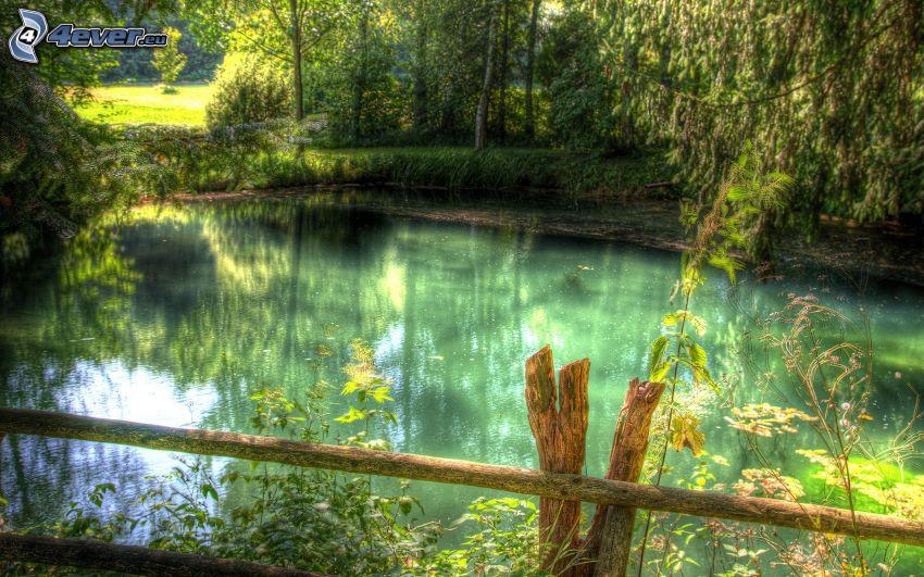 lago en un bosque, árboles, cerco de madera