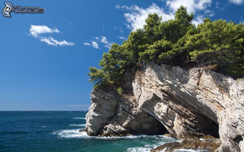 arrecife, roca, mar