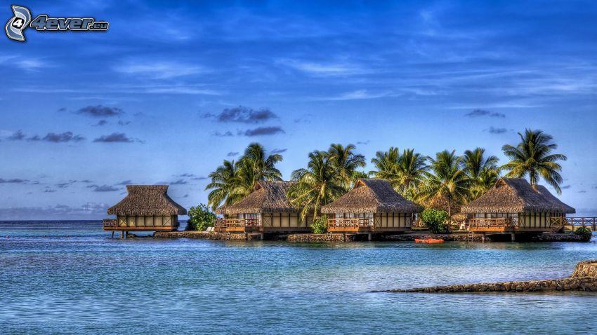 Casas en el agua, mar, palmera, vacaciones, HDR