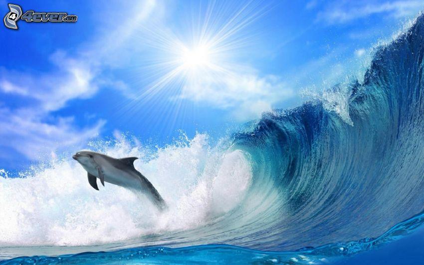 delfines saltando, ola, sol