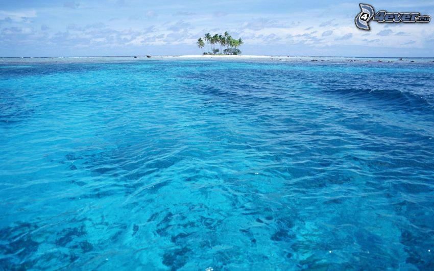 el mar azul, isleta de palmeras, Hawai