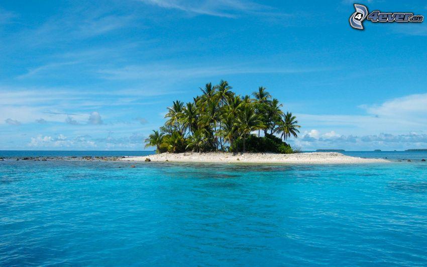 isla, el mar azul