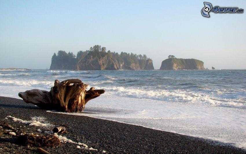 isla rocosa, islas, costa, mar, madera