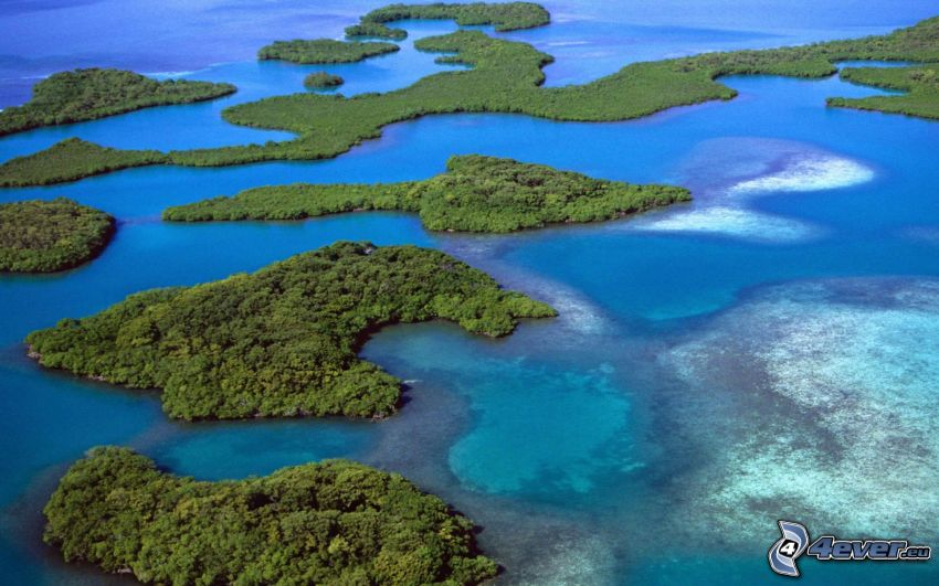 islas, mar, América