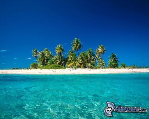 isleta de palmeras, el mar azul, arena