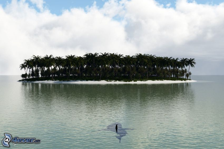 isleta de palmeras, mar, nubes