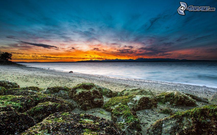 mar, después de la puesta del sol, cielo de la tarde, playa