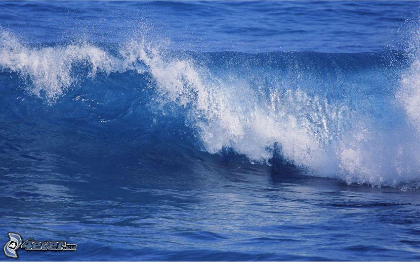 ola, agua azul, mar