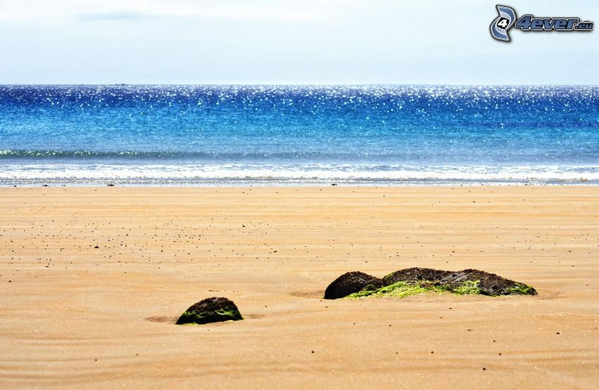 playa, mar, ola