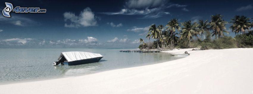 playa de arena, palmera, mar, barco, panorama