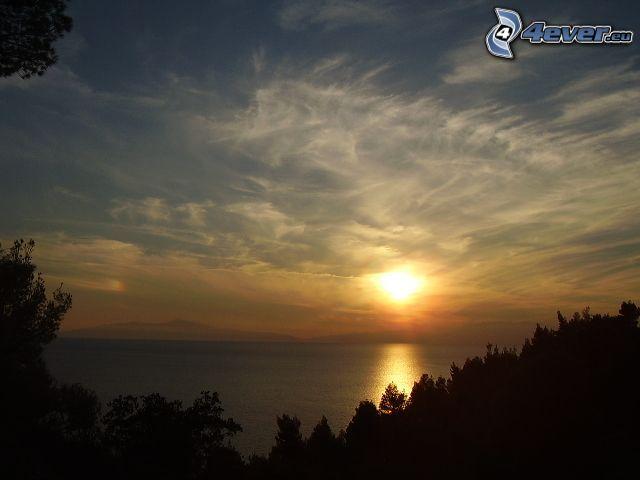puesta de sol sobre el mar, cielo, vista al mar, silueta de un bosque