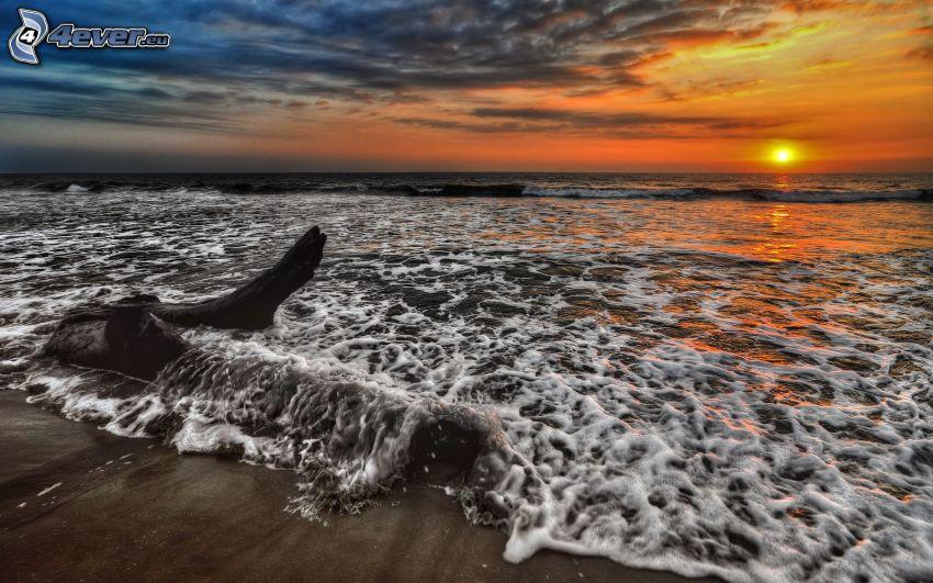 puesta de sol sobre el océano, playa