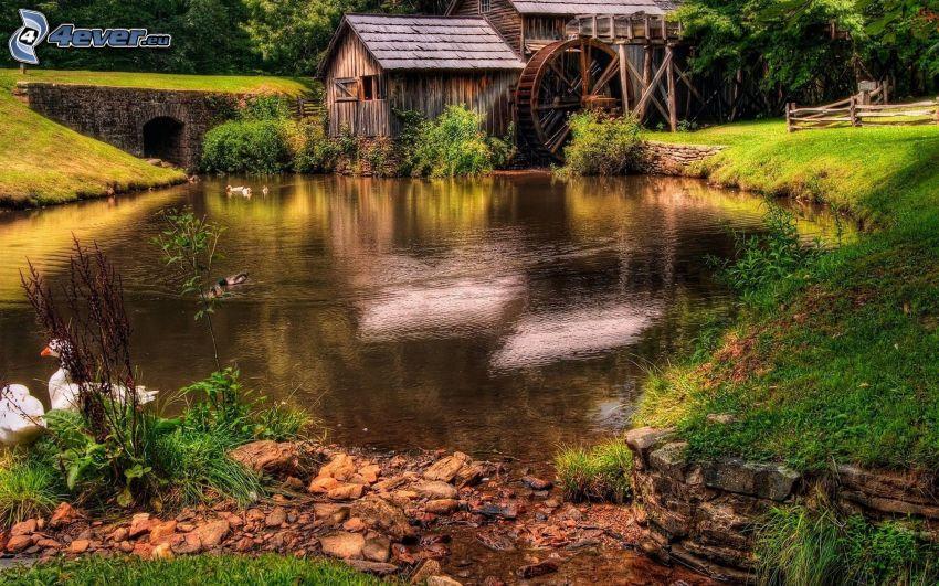 molino de agua, choza, estanque