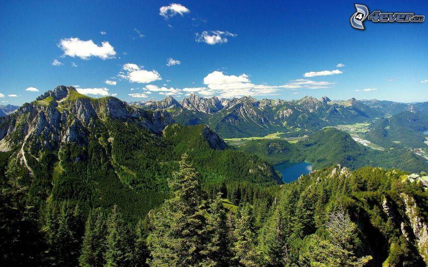 Alpes, lago de montaña, bosque
