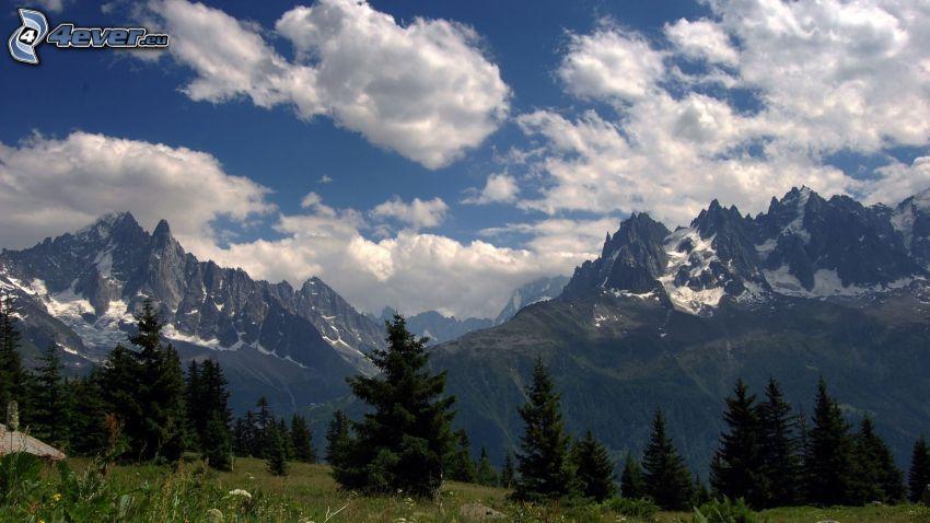 Alpes, montaña rocosa, nubes, árboles coníferos