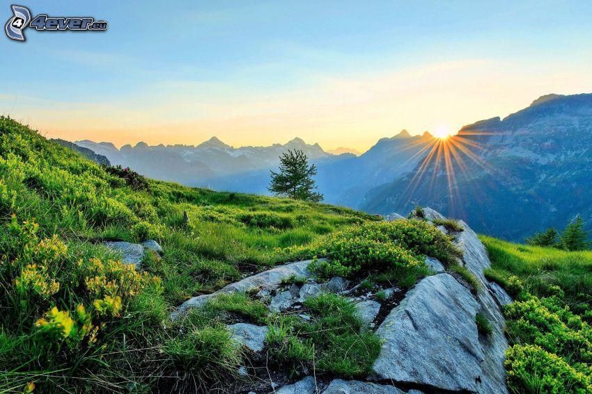 Alpes, puesta de sol detrás de las montañas, prado