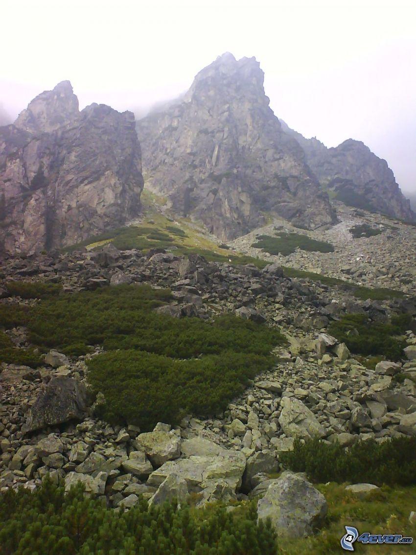 Alto Tatra, montañas, cielo, nubes