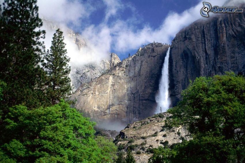 cascada en el Parque Nacional Yosemite, bosque, árboles, rocas, naturaleza
