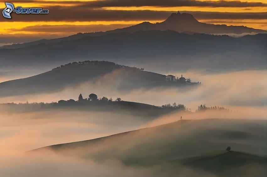 colina, niebla baja, después de la puesta del sol