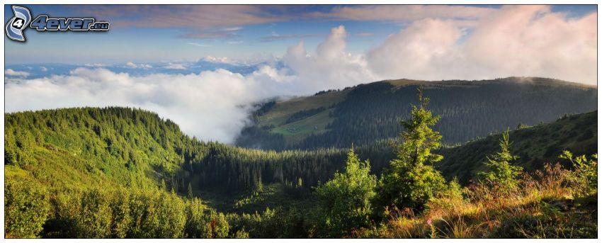 colina, nubes, árboles