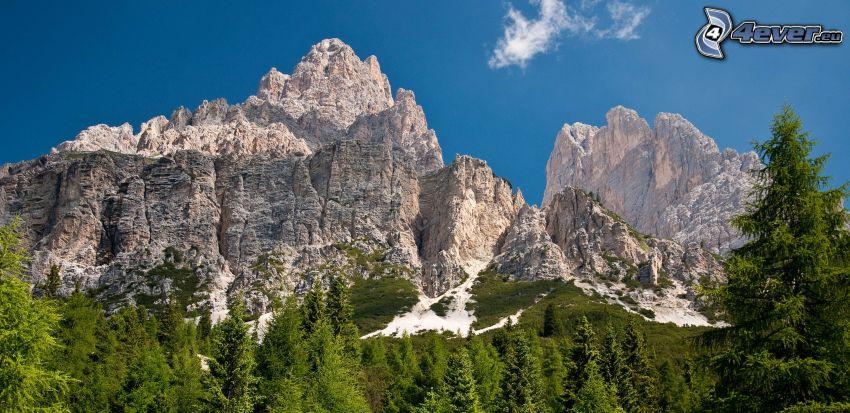Dolomitas, montaña rocosa, bosques de coníferas