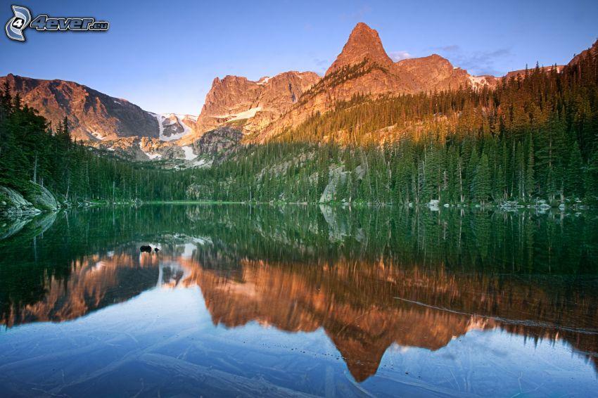 lago, montaña rocosa, bosques de coníferas, reflejo
