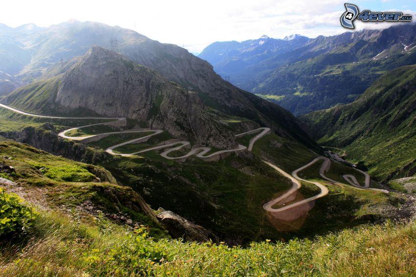 montaña rocosa, camino, plantas