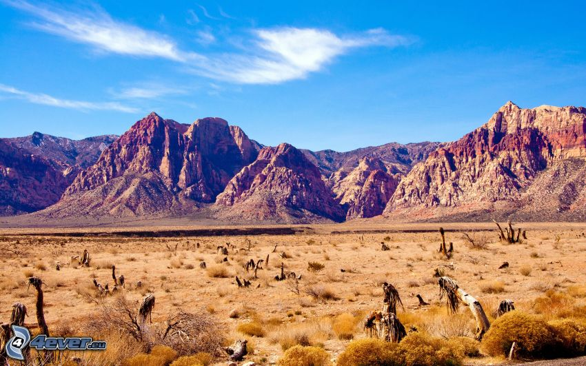 montaña rocosa, hierba seca
