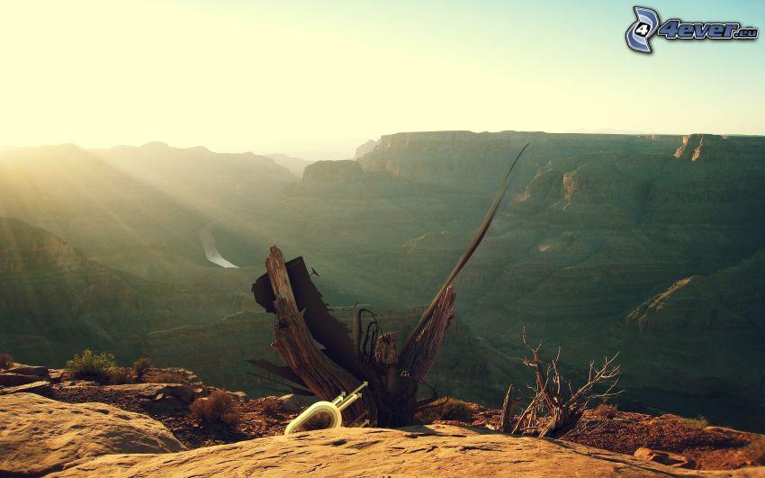 montaña rocosa, tronco seco