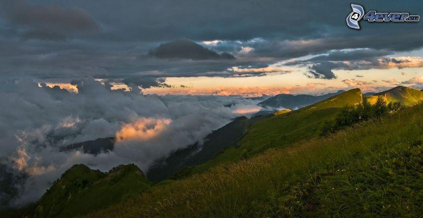 montañas en las nubes, hierba