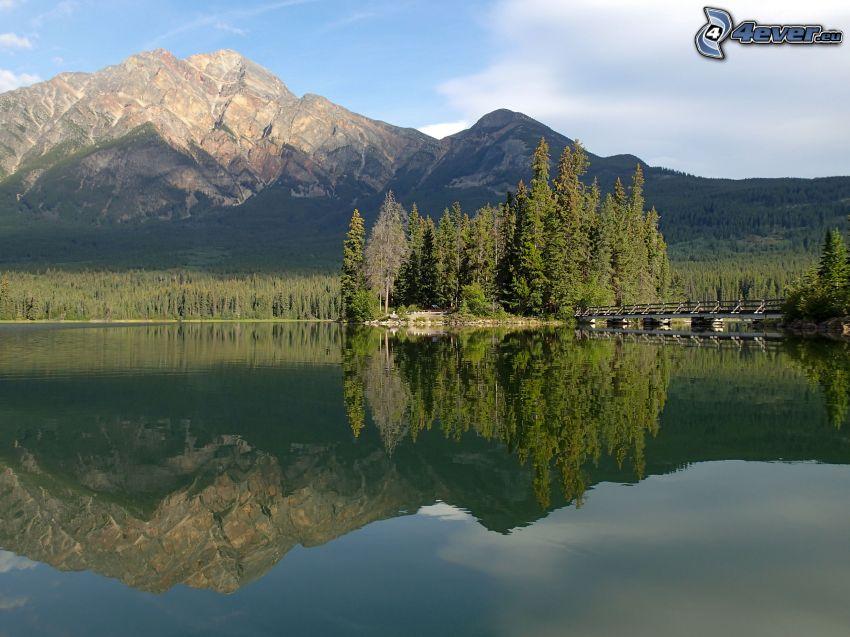 Monte rocoso, bosques de coníferas, lago, reflejo