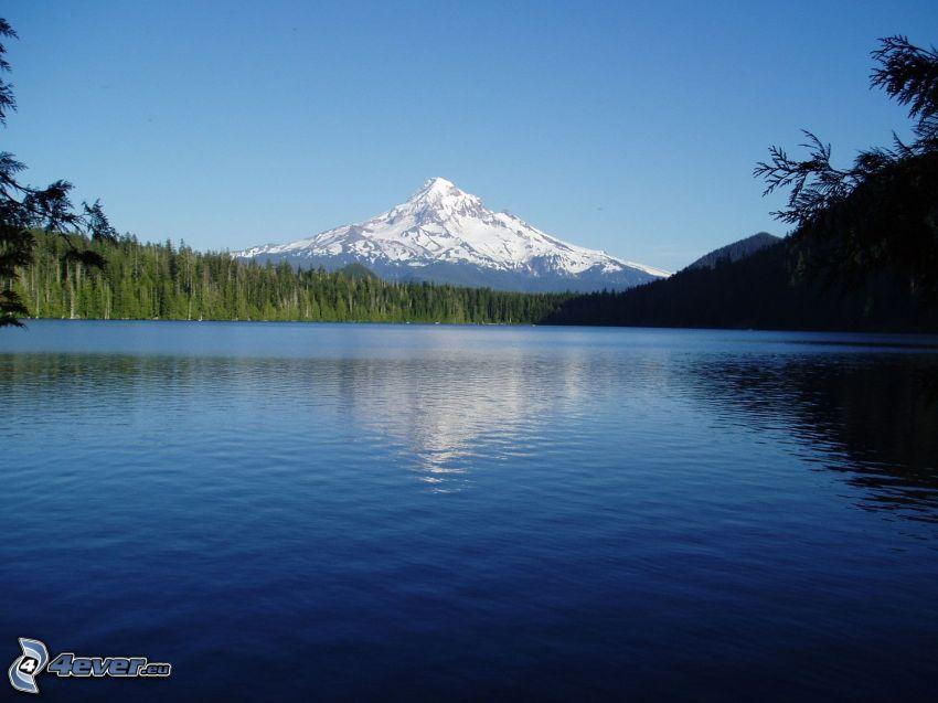 Mount Hood, montaña nevada, lago, bosque