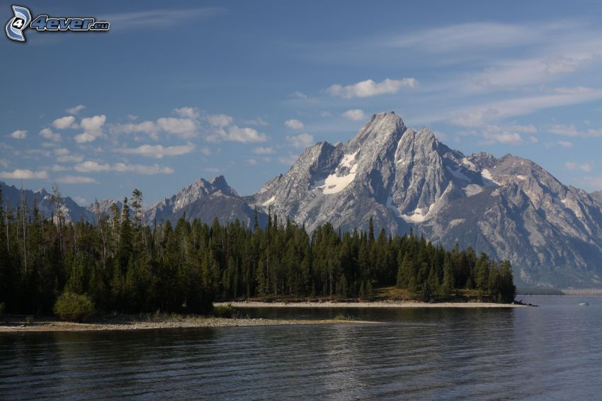 Mount Moran, Wyoming, lago, bosques de coníferas, montaña rocosa