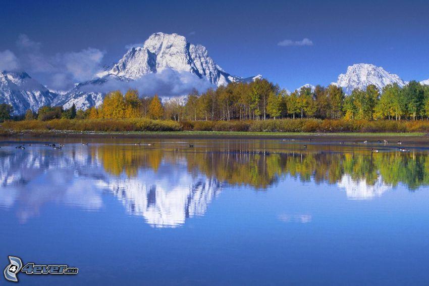 Mount Moran, Wyoming, montaña rocosa, lago, bosque