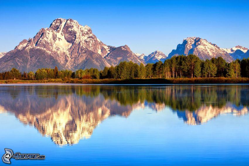 Mount Moran, Wyoming, montaña rocosa, lago, reflejo, bosque