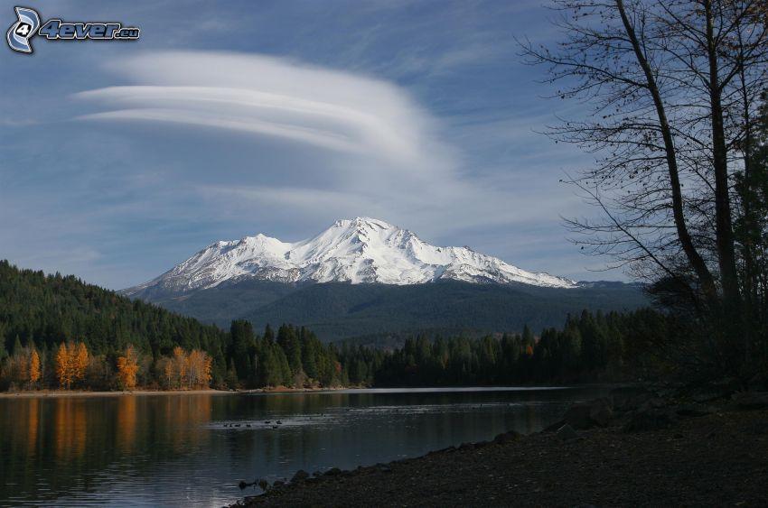 Mount Shasta, montaña nevada, bosque, río