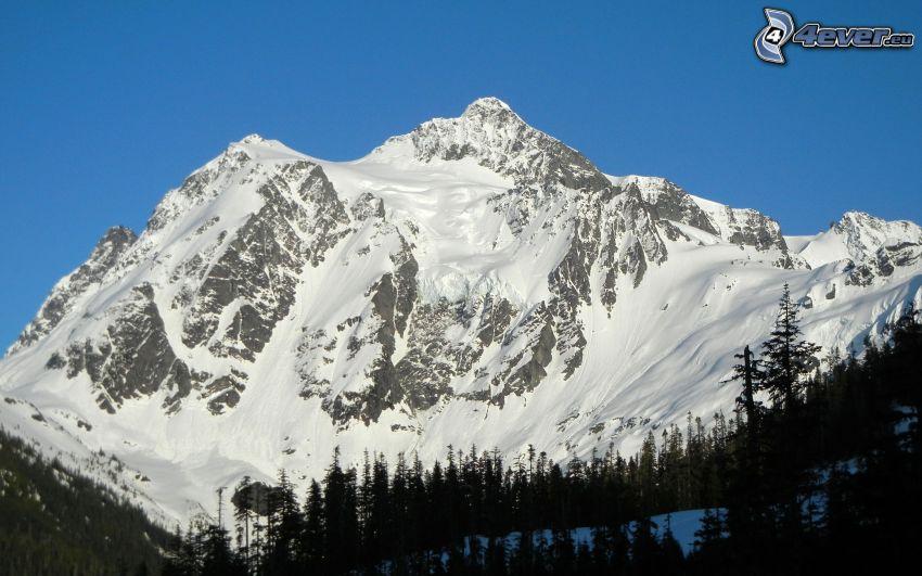 Mount Shuksan, montaña nevada