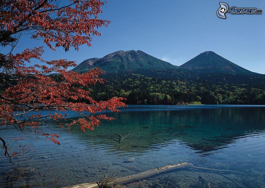 paisaje de otoño, río, hojas rojas
