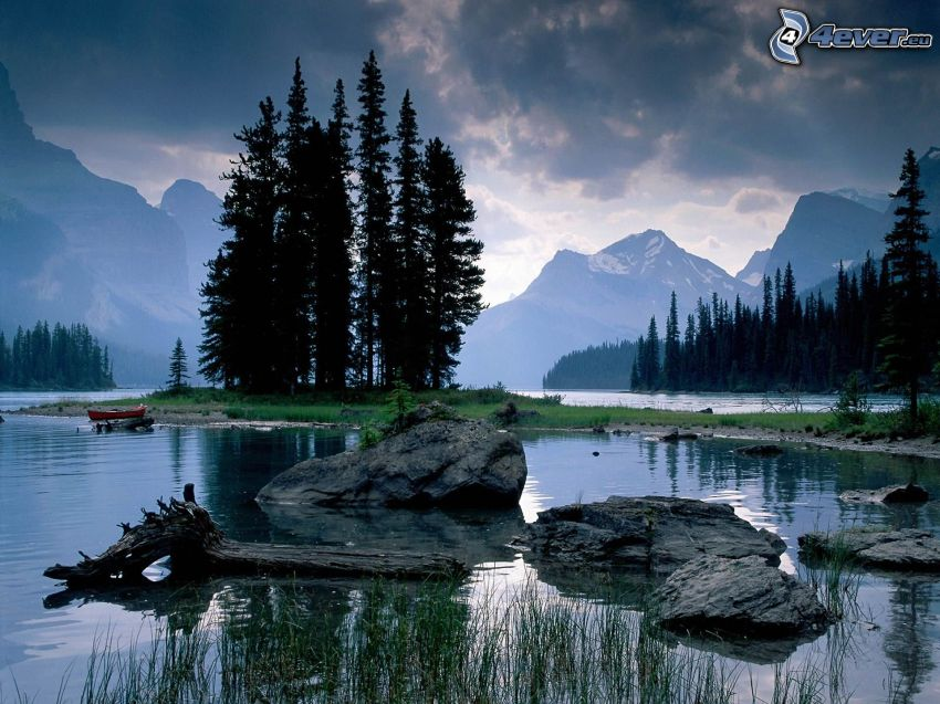 Parque Nacional Jasper, Alberta, Canadá, árboles coníferos, isla, río, montañas, rocas