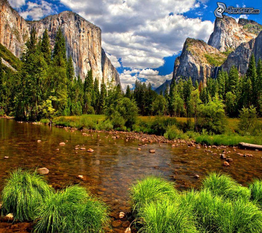 Río en el Parque Nacional de Yosemite, El Capitan, corriente, montaña rocosa, hierba, árboles, nubes