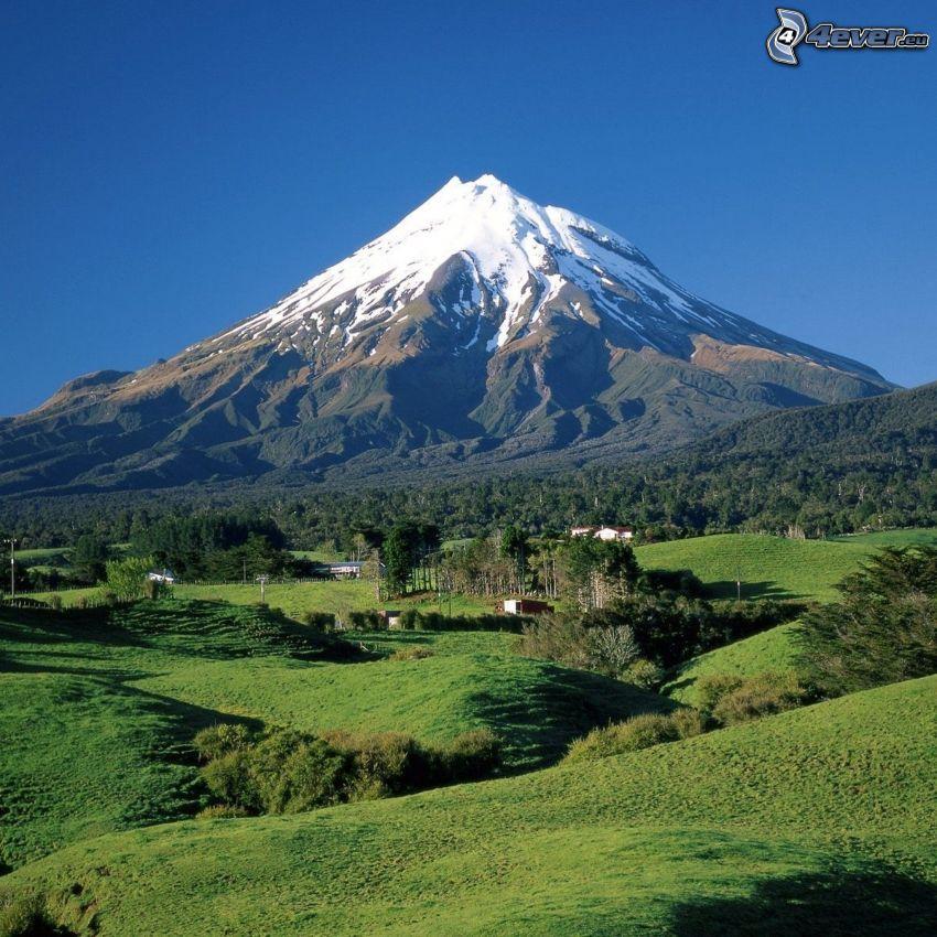 Taranaki, Nueva Zelanda, prados