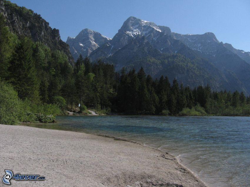 Totes Gebirge, lago, bosque, montaña rocosa