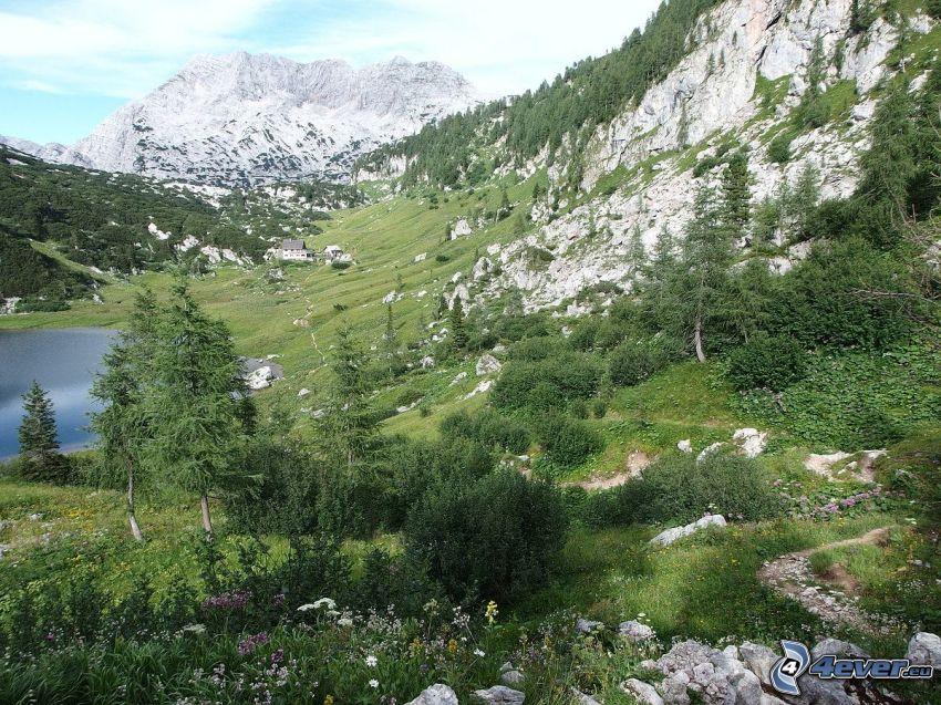 Totes Gebirge, prado, lago, montaña rocosa