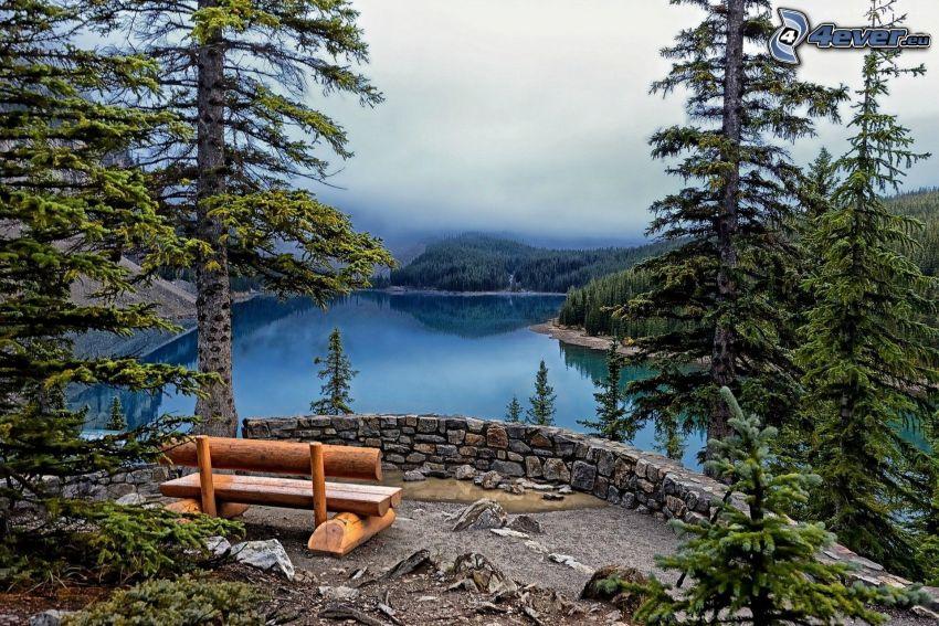 Moraine Lake, banco, árboles coníferos