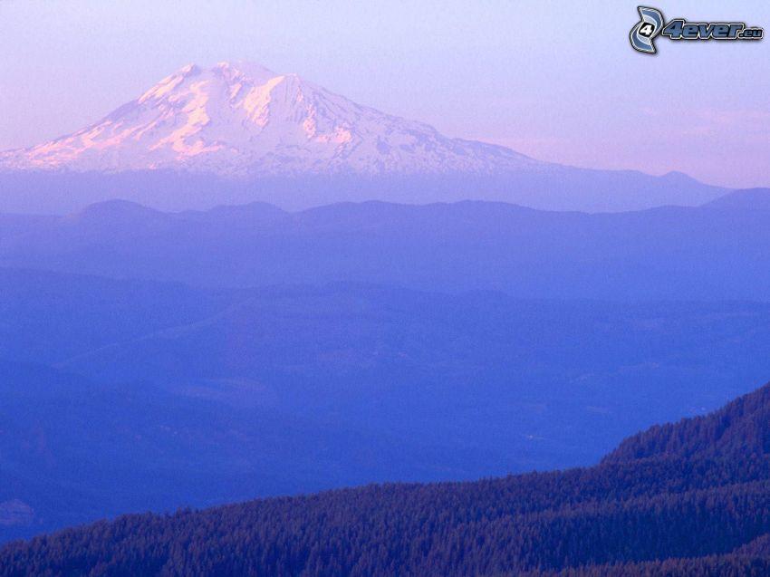 Mount Adams, Washington, USA, colina, nieve, montaña, bosque