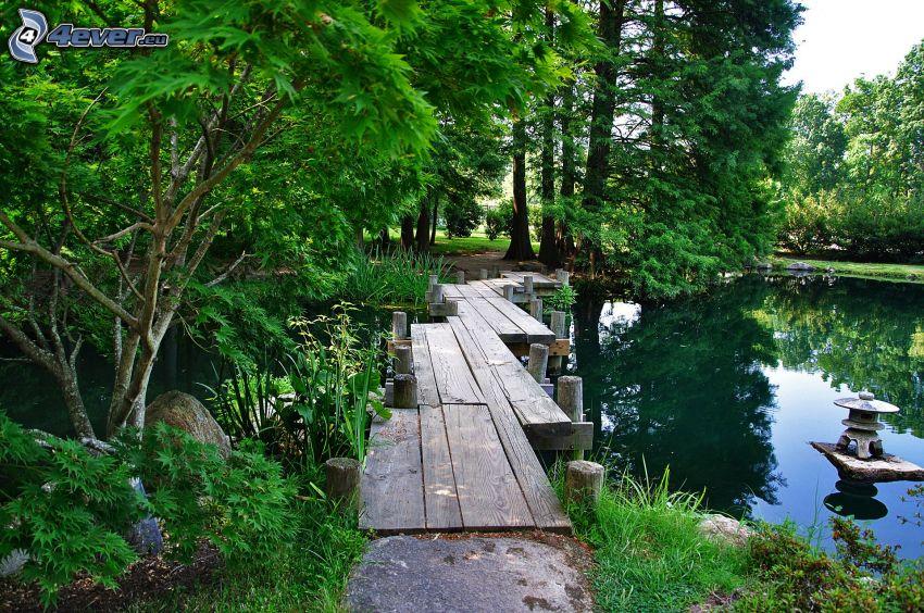 muelle de madera, verde, lago, árboles