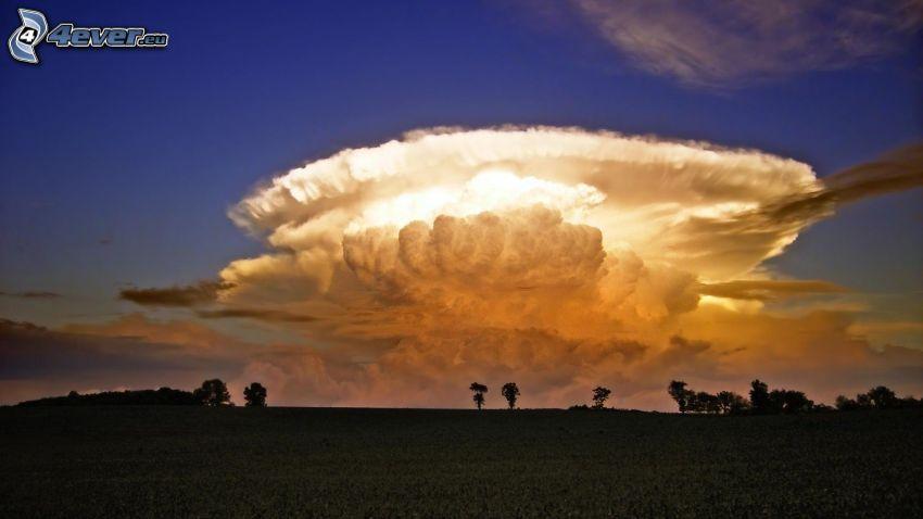 nube, siluetas de los árboles