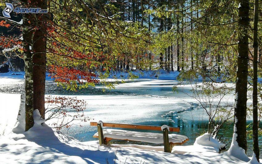 paisaje nevado, banco, lago, bosque, nieve