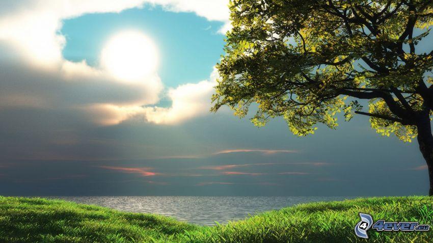 árbol solitario, lago, sol, nubes, hierba