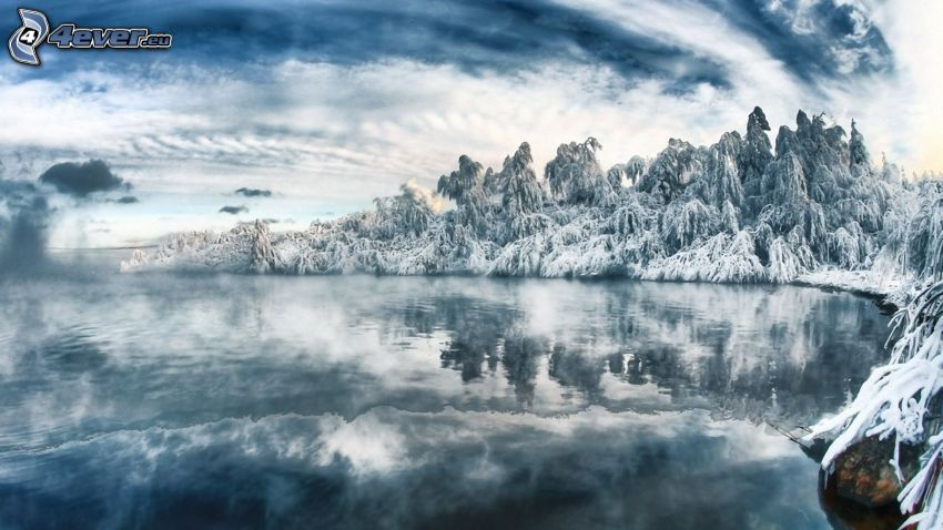 bosque congelado, lago, agua
